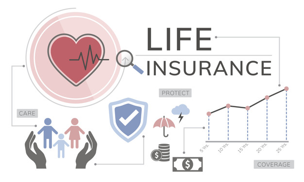 vector image of best life insurance